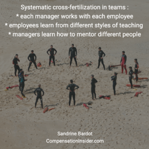 Deploy systematic cross-fertilisation in your team